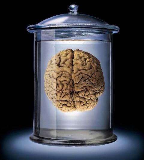 braincc