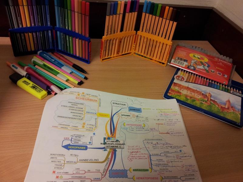 Mijn succes is te danken aan mindmapping. Deze mindmap is gemaakt met iMindmap, www.ThinkBuzan.com