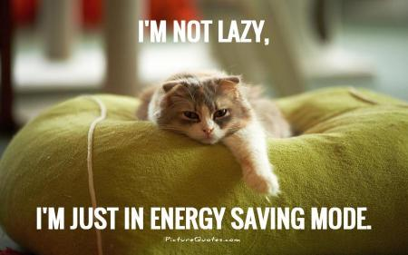 im-not-lazy-im-just-in-energy-saving-mode-quote-1